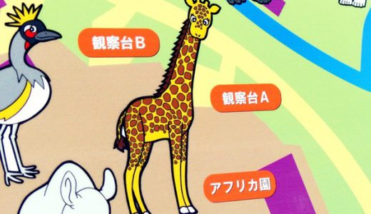 えっ!?キリンの色は「黄色と黒」じゃない?実際に調べてみた!