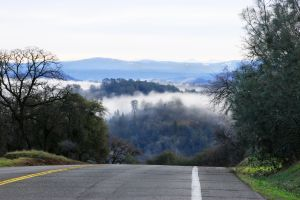 933457_road_to_the_mist